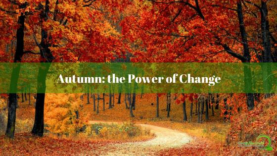 6 Unbelievable Tips for Harnessing the Power of Change